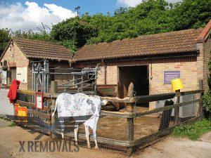 Newham City Farm
